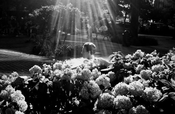 Beauty Among the Flowers